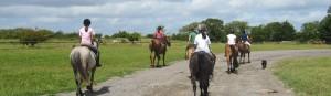 equestrian centre campamento
